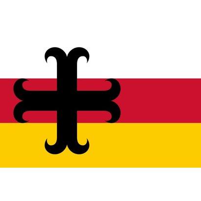 Vlag Asten Gemeentevlag