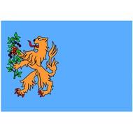 Vlag Brummen Gemeente flag