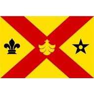 Vlag Binnenmaas Gemeentevlag