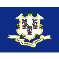 Vlag Connecticut State flag