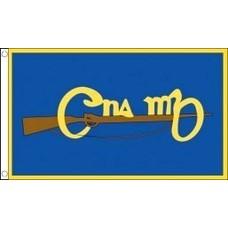 Vlag Cumann na mBan