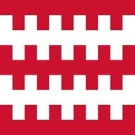 Vlag Dongen Gemeente flag