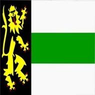Vlag Druten Gemeente flag