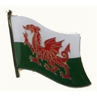 Speldje Wales  pin