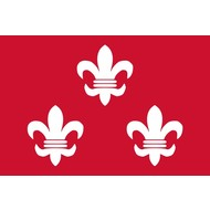 Vlag Beverwijk Gemeentevlag
