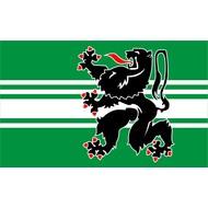Vlag Oost Vlaanderen vlag