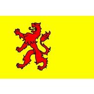 Vlag Province South Holland