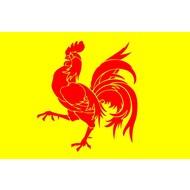 Vlag Wallonia Walloon Region flag