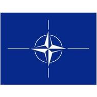 Vlag NATO NAVO