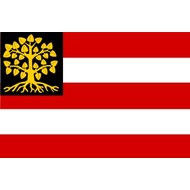 Vlag 's Hertogenbosch  Den Bosch Gemeentevlag