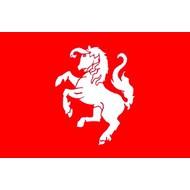Vlag FC Twente Supporters flags Set