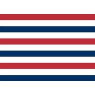 Vlag Willem II Tilburg Supporters flags Set