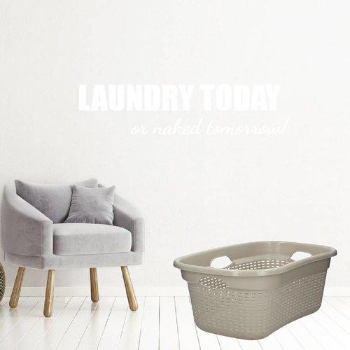 Laundry today or naked tomorrow!