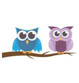 Muursticker twee uilen op tak