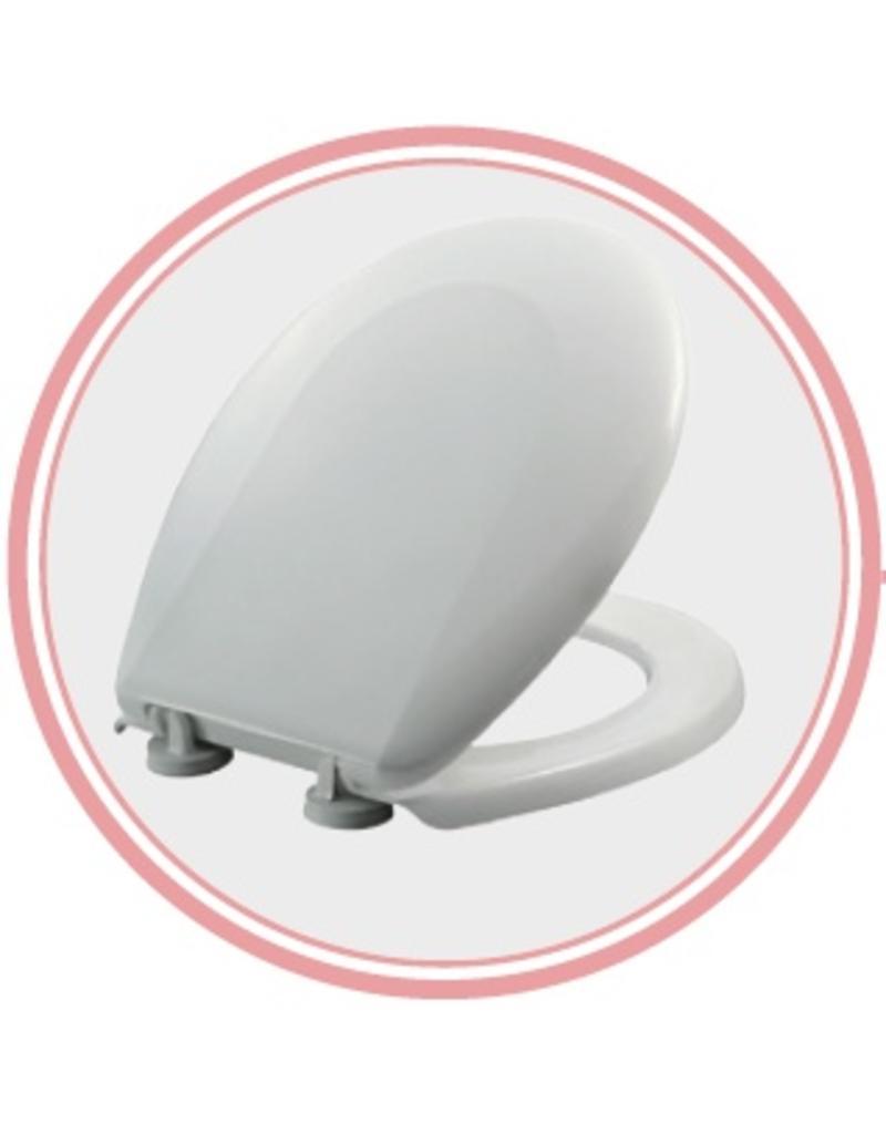 Toilet Lid