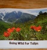 Going wild for Tulips (Englisch)