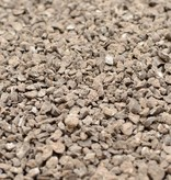 Bioboden (Bodenschimmel)