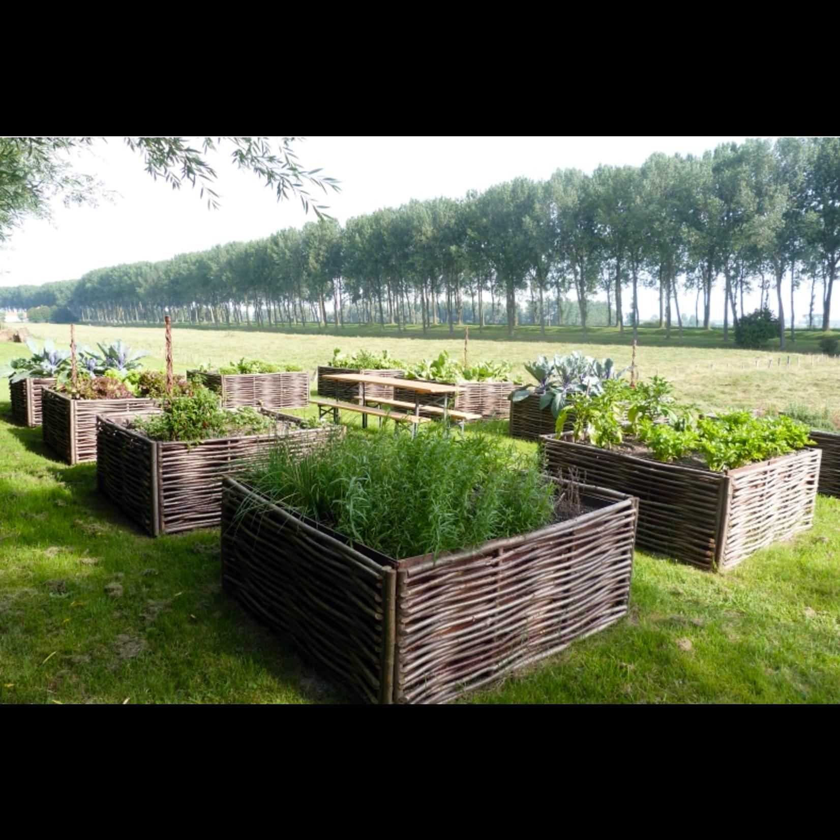 Moestuinbakken en plantenbakken afbeelding