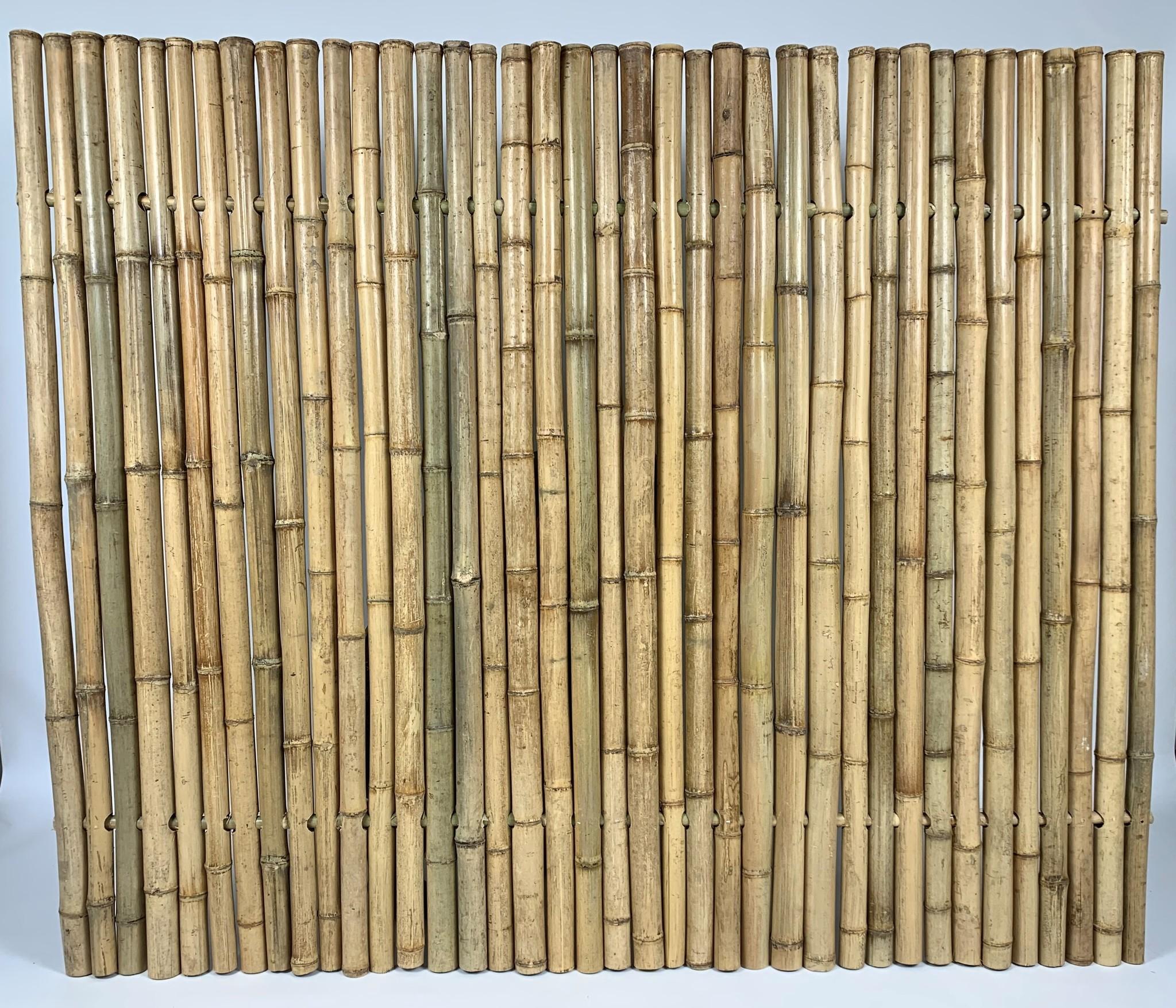 Bamboeschermen afbeelding