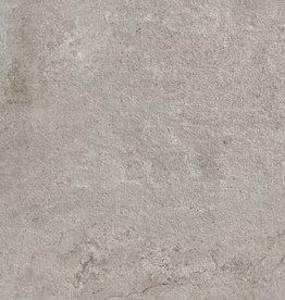 Reine Grey Płytki podłogowe matowy, fazowane, kalibrowane, 1 wybór w 60x60x1 cm