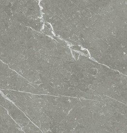 Vloertegels Naxos Steel 60x60x1 cm, 1.Keuz