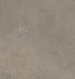 Reims Taupe Płytki podłogowe matowy, fazowane, kalibrowane, 1 wybór w 60x60x1 cm