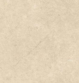 Bodenfliesen Feinsteinzeug Argentiere 80x80x1 cm