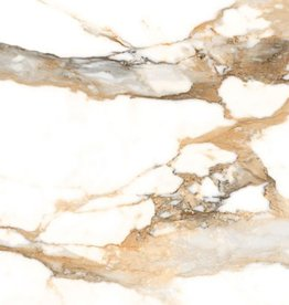 Crash Beige Floor Tiles in Polished, chamfered , calibrated, 1.Choice in 60x60x1 cm