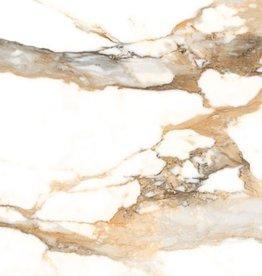Crash Beige vloertegels gepolijst, gekalibreerd, 1.Keuz in 60x60x1 cm