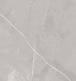Bodenfliesen Feinsteinzeug Bali Grau 60x60x1 cm