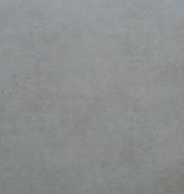 Bodenfliesen Feinsteinzeug Grey 100x100x0,6 cm