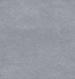 Basalt Grey  vloertegels gepolijst, gekalibreerd, 1.Keuz in 30x60x1 cm