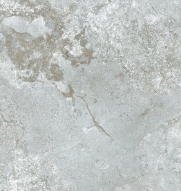 Bodenfliesen Feinsteinzeug Selvy Gris 60x60 cm
