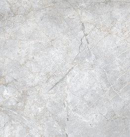 Vloertegels Charon Perla gepolijst, gekalibreerd, 1.Keuz in 60x60x1 cm