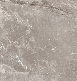 Floor Tiles Louvre Gris in polished, chamfered , calibrated, 1. Choice in 75x75 cm
