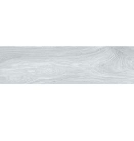 Bodenfliesen Feinsteinzeug Plank Gris 20x120x1 cm