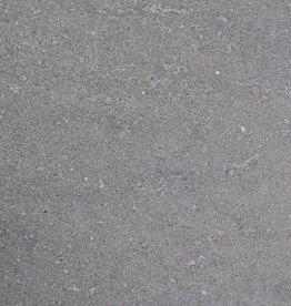 Basaltina Carrelage Ardoise première qualité 1. Choice dans 60x30x1 cm