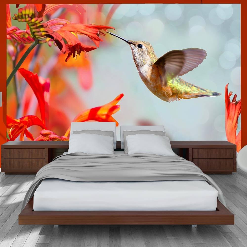 Fotobehang - Hummingbird flight