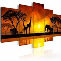 Schilderij - Savanne - zonsondergang, Afrika, Geel/Oranje, 2 Maten, 5luika