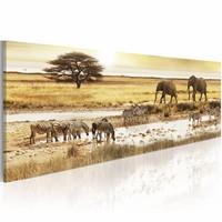 Schilderij - Afrika, drinken, Geel, 2 Maten, 1luik