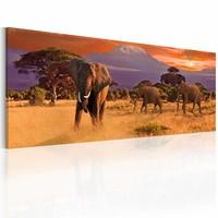 Schilderij - Het marcheren van Olifanten, Afrika, multi-gekleurd, premium print