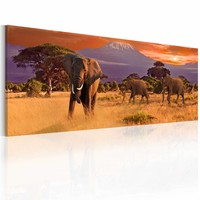 Schilderij - Het marcheren van Olifanten, Afrika, Oranje, 2 Maten 1 luik