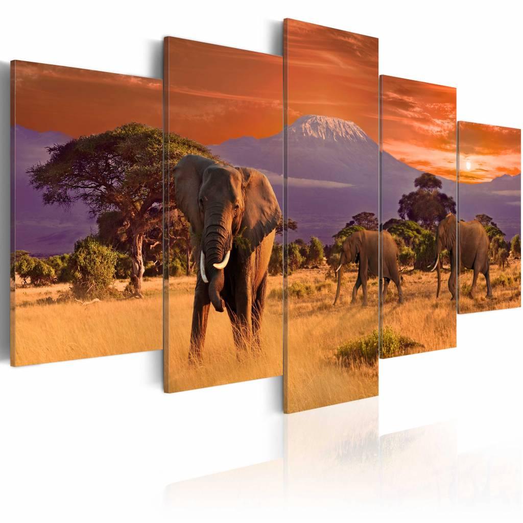 Schilderij - Het marcheren van Olifanten - Afrika, multi-gekleurd, 5luik, wanddecoratie