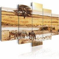 Schilderij - Zebra's op de Savanne - Afrika, 5luik, Geel/beige, wanddecoratie