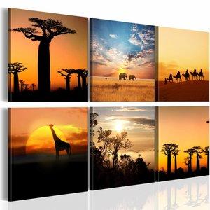 Canvas Schilderij - Collage Afrika, Oranje, 2 Maten, 6 luik