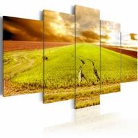 Schilderij - Wielsporen op een Veld, 5luik , groen ,  wanddecoratie , premium print op canvas