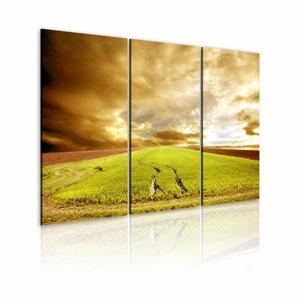 Schilderij Wielsporen in het veld II, groen, 3luik, 2 maten
