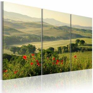 Schilderij- Toscane, Groen, 3luik