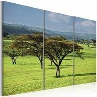Schilderij - Afrika, Groen, 3luik
