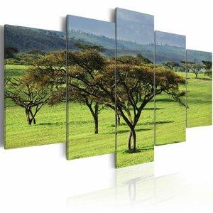 Schilderij - Groen Afrika, Groen, 5luik